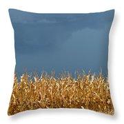 Stormy Corn Throw Pillow