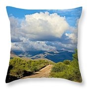 Stormy Day In The Desert Throw Pillow