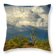 Stormy Desert Skies  Throw Pillow