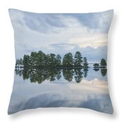 Stormy Morning On The Lake Throw Pillow