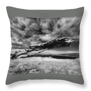 Stormy Promise Throw Pillow