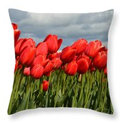 Stormy Reds Throw Pillow