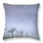 Stormy Wheather Throw Pillow
