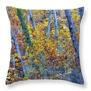 Story Rainforest Throw Pillow