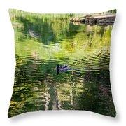 Stow Lake Idyll Throw Pillow