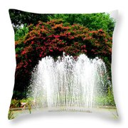 Stowe Fountain 2 Throw Pillow
