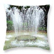 Stowe Fountain 3 Throw Pillow