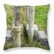 Straddle The Fence Throw Pillow