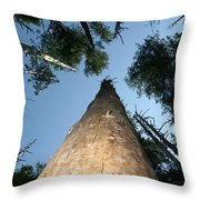 Straight And Narrow Throw Pillow