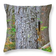 Straight Tail Squirrel Throw Pillow