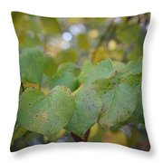 Stranded Hearts Of Autumn Throw Pillow