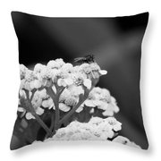 Strange Beauty Throw Pillow
