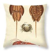 Strange Crabs Throw Pillow