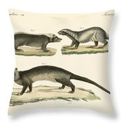 Strange Skunks Throw Pillow