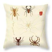 Strange Spiders Throw Pillow