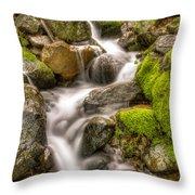 Stranger Falls #11 Throw Pillow