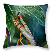 Strangler Throw Pillow
