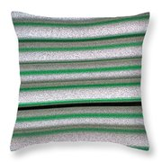 Straw Green Throw Pillow