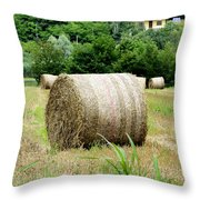 Straw To Collect Throw Pillow