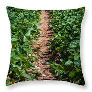 Strawberry Farm Field Throw Pillow