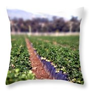 Strawberry Field Throw Pillow