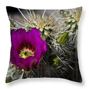 Strawberry Hedgehog  Throw Pillow