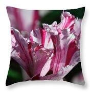 Strawberry Swirled Throw Pillow