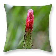 Strawberry Wildflower Throw Pillow