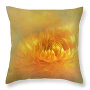 Strawflower IIi With Textures Throw Pillow