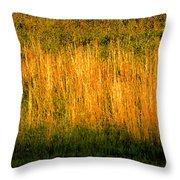 Straw Landscape Throw Pillow