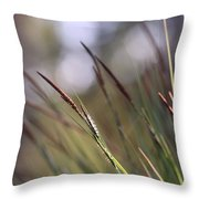 Straws In The Wind Throw Pillow