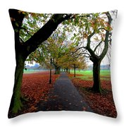 Stray Beauty In Autumn No 2 Throw Pillow