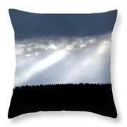 Streaks Of Sunlight  Throw Pillow