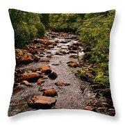 Stream Along Gros Morne Trail In Gros Morne Np-nl Throw Pillow