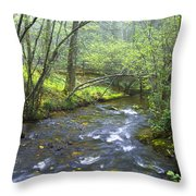 Stream Below Amicalola Falls Throw Pillow