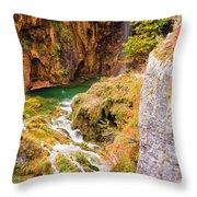 Stream In The Mountains Throw Pillow