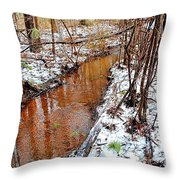Stream In The Winter Forest Throw Pillow