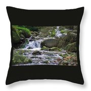 A Stream In Wicklow # 4 Throw Pillow