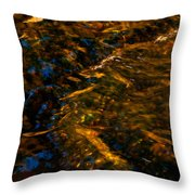Stream Of Reflection Throw Pillow