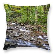 Stream Of Serenity Throw Pillow