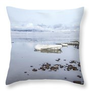 Stream Of Stillness Throw Pillow