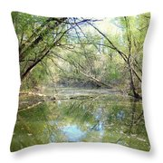 Stream Of Water Throw Pillow