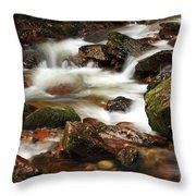 Stream Running Over Rocks Throw Pillow