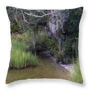 Stream To The Past Throw Pillow
