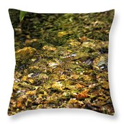Stream Water Throw Pillow