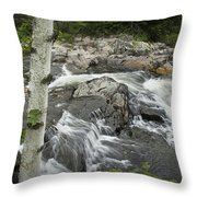 Stream With Waterfall In Vermont Throw Pillow