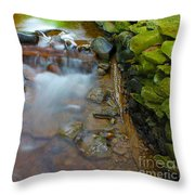 Streaming Green Throw Pillow