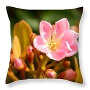 Street Flower Throw Pillow
