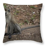 Street Monkey Throw Pillow