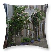 Street Scene Durfort France Throw Pillow
